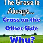 grass is always grass on the other side